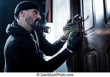 専門家, 強盗, ドアの鍵を開けること