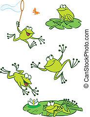 少数, 緑, カエル