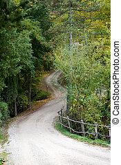 山, イタリア, 驚かせること, 中に, 秋の森林