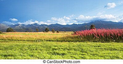 山, パノラマ