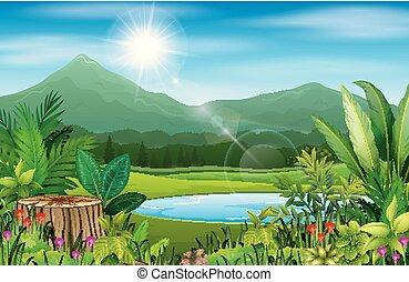 山, 森林, 風景, 光景