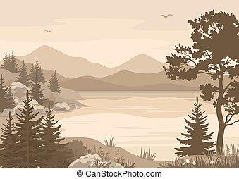 山, 湖, 風景, 木, 鳥