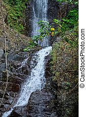 島, フィリピン。, 滝, panay