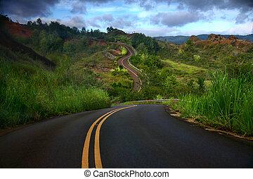島, 道, 芸術的, kauai, 曲がった