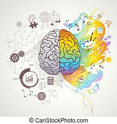 左, 脳, 概念, 権利