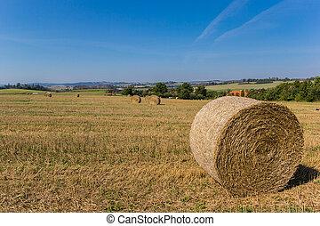 巻かれた, moravia, 風景, 干し草