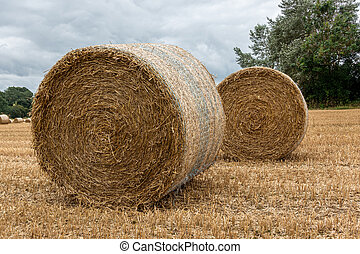 干し草, 回転した, モデル, 2, の上, フィールド, ベール
