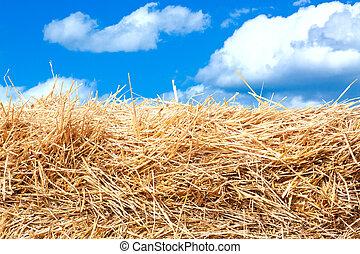 干し草, 細部, 山