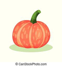 平ら, プロダクト, 有機体である, 農場, 大きい, stem., 健康, pumpkin., ラウンド, ヒョウタン, ベクトル, 緑, オレンジ, 農業, plant., アイコン
