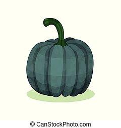 平ら, 農場, 自然, squash., product., gourd., 暗い, 健康, ベクトル, 緑, 食物, ドングリ, ラウンド, アイコン