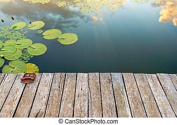 平和である, 池, 場所