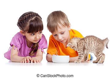幸せ, 供給, 子供, 子ネコ