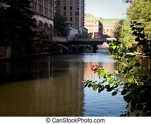 建物, 川, 古い, サン・アントニオ