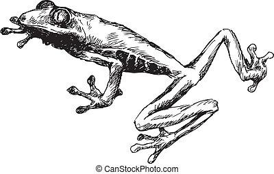 引かれる, カエル, 手