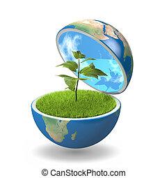 惑星, 植物, 中
