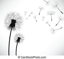 打撃, 花, 風, タンポポ