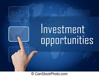 投資, 機会