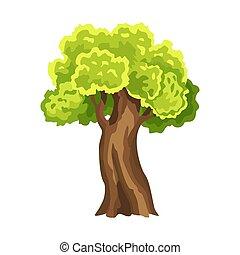 抽象的, 定型, 木。, イラスト, 緑, 自然, 水彩画, foliage., leafage., 木