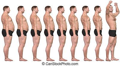 損失, 重量, フィットしなさい, 成功, 後で, 3d, 脂肪, 前に, 人