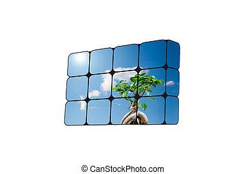 支持できる, 立方体, 成長, concept:, 手