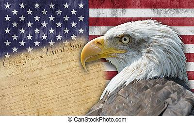 旗, ワシ, アメリカ人, はげ