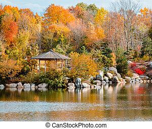 日本の庭, frederik, meijer, 風景, 秋