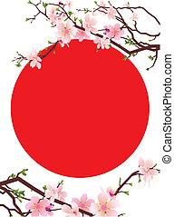 日本, sakura