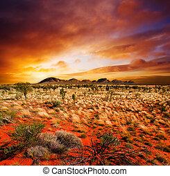 日没, 砂漠, 美しさ