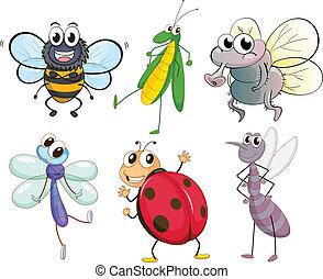 昆虫, 別