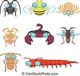 昆虫, 節足動物, グラフィック