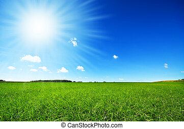 明るい青, 新たに, 空, 草, 緑