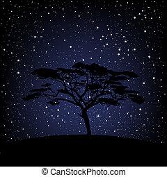 星が多い, 上に, 木, 夜
