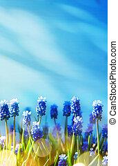 春の花, 芸術, 背景, イースター