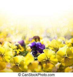 春, パンジー, 芸術, 花が咲く, 背景