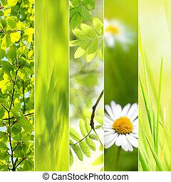 春, 季節的, コラージュ