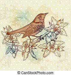 春, -, 手, ベクトル, 型, 引かれる, 花, 鳥, カード