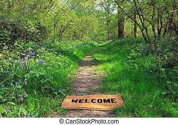 春, 横, 歓迎, 森林地帯