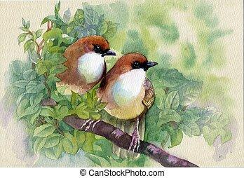 春, 絵, 鳥, コレクション