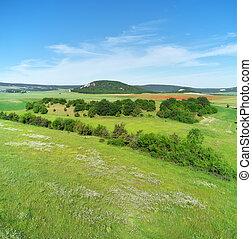 春, panorama., 牧草地