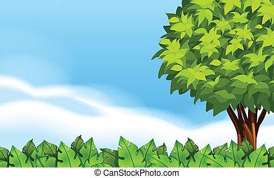 景色, 夏, 植物, 緑