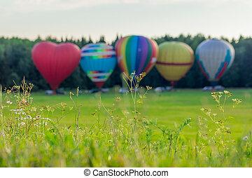 暑い, 草, 風船, 空気, 前部, 上に, 田舎, 光景, フォーカス, ぼんやりさせられた