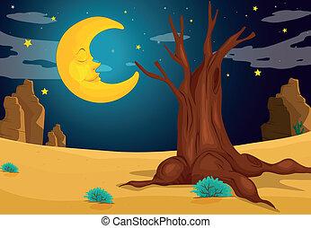 月光, 夕方
