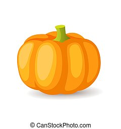 有機体である, illustration., 熟した, 健康, 隔離された, 食物, 明るい, ベクトル, 野菜, オレンジ, アイコン, カボチャ