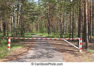 木製である, 木, 方法, 障壁, ブロックする