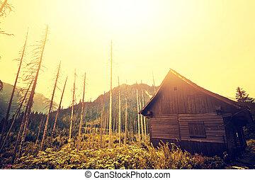 木製の家, 古い, 山。, 霧が濃い