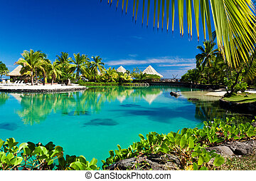 木, トロピカル, リゾート, やし, 礁湖, 緑