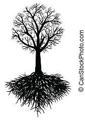 木, ベクトル, 根