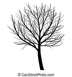 木, 死んだ, ブランチ