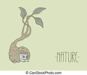 木, 自然, 穴, 動物, すてきである, ドロー
