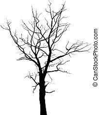 木, 葉, なしで, シルエット, 死んだ